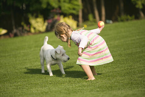pet friendly and kid friendly turf allergen-free synthetic turf backyard turf infill