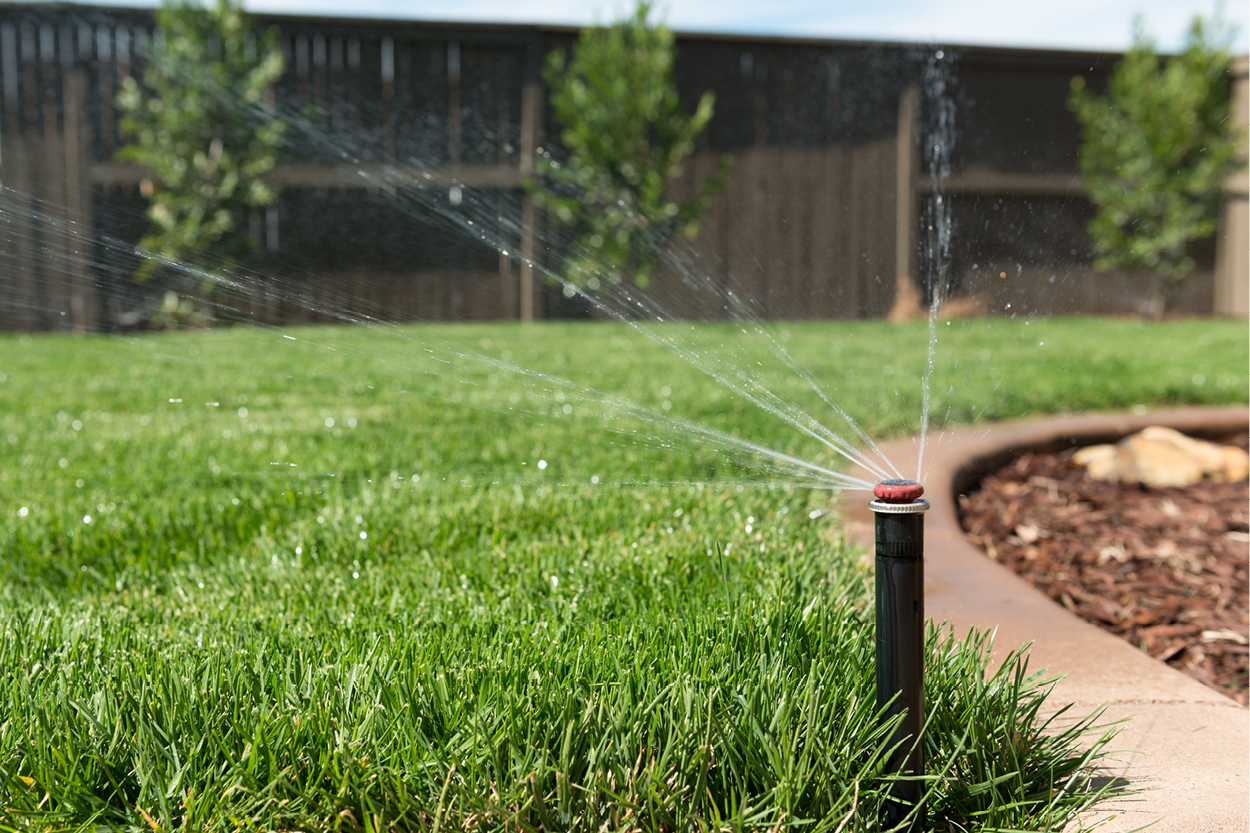 8 Simple Ways to Save Water: Home and Lawn