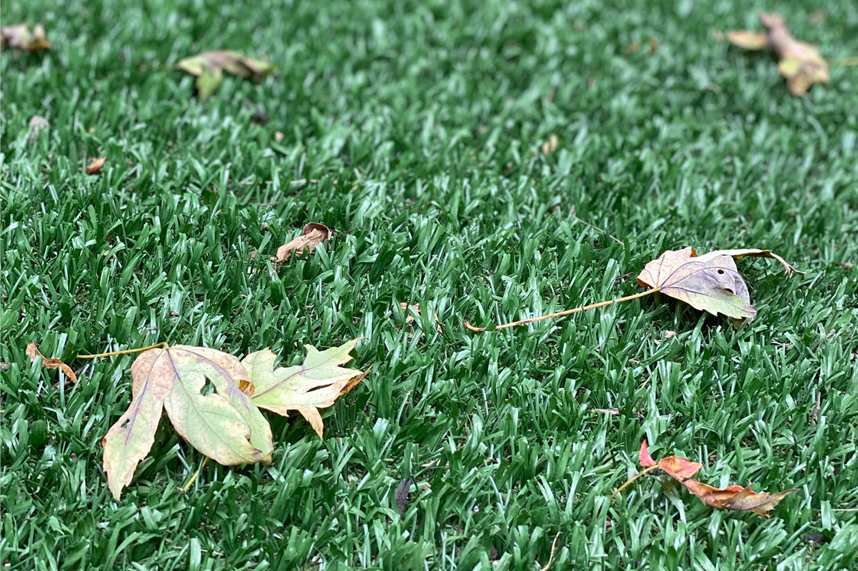 How to Rake Leaves on Artificial Turf Without Causing Damage